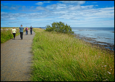 Boulmer To Craster Walk, Northumberland, UK - 2020.