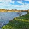 Watergate Forest Park, Gateshead, Tyne & Wear, UK - 2015.