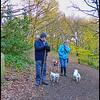Watergate Forest Park, Gateshead, Tyne & Wear, UK - 2015