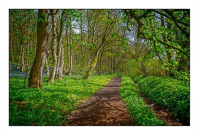 Morpeth Walk, Northumberland, UK - 2021.