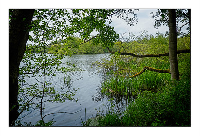 Bolam Lake To Shaftoe Crags Walk, Northumberland, UK -  2021.