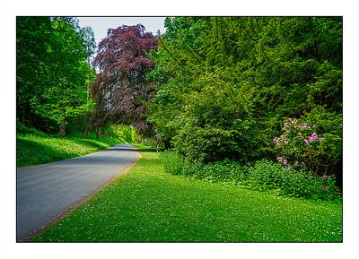 Hulne Park Walk, Alnwick, Northumberland,  UK - 2021.