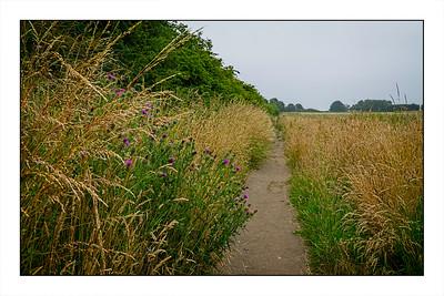 Warkworth To Alnmouth Walk, Northumberland, UK – 2021.