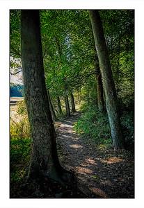 Seaton Sluice To Holywell Dene Walk, Northumberland, UK - 2021.