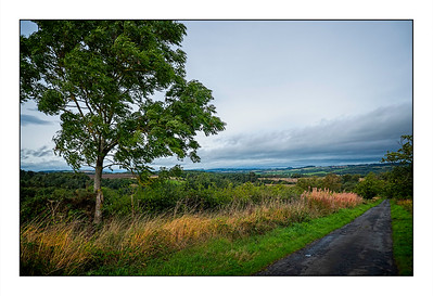 New Ridley To Stocksfield Walk, (The Tyne Valley) Northumberland, UK - 2021.