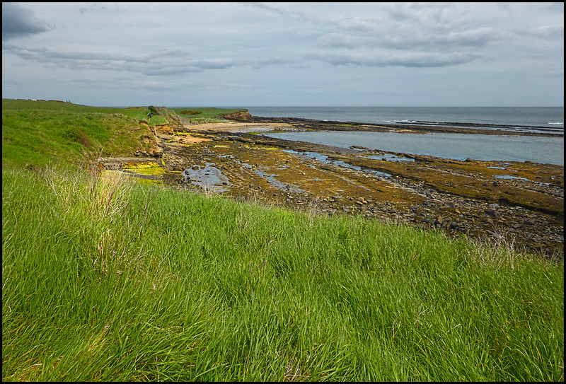 Boulmer To Howick, Northumberland Coast, UK - 2017.