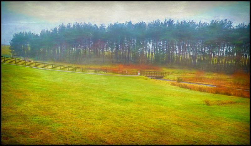 Derwent Reservoir, County Durham, UK - 2018.