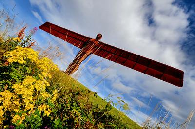 The Angel Of The North - Gateshead, Tyne & Wear - 2013