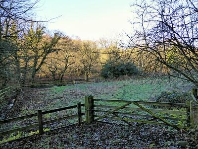 Derwent Walk Country Park , Tyne & Wear - UK 2014.