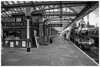 """BR 2MT Class 78019 at Loughborough Central with the lunchtime diner """"The Elizabethan""""."""