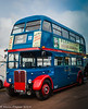 1950 AEC Regent III in Browns Blue Livery