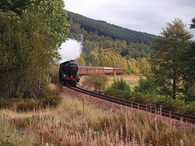 Main Line Steam and Diesel Tours