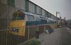 Class 52 Western at Bridgenorth