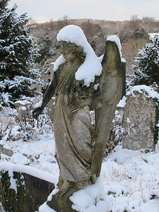 Abbey Cemetery, Widcombe, Dec 2010