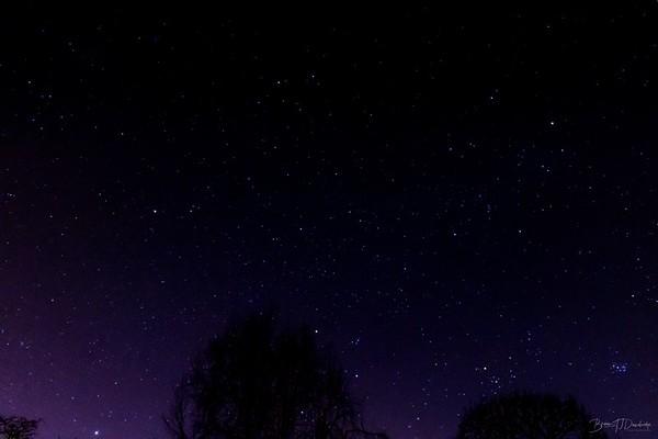 The Stars at Night