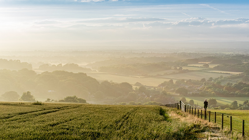 A Summer Evenings on the Downs