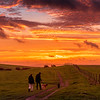 Early morning dog walkers as the sun rises on the South Downs