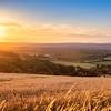 SDW_Sunset_D850-0310