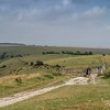 South Downs Way-0178