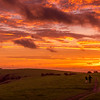 A November Dawn on the South Downs