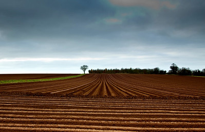 Ploughed patterns