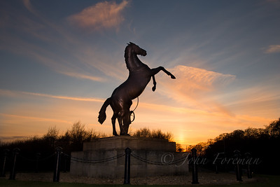 Newmarket bronze stallion