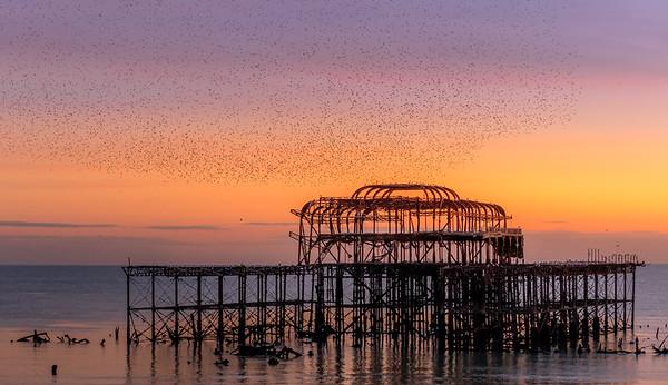 An evening murmuration over West Pier, Brighton