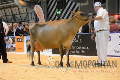 UK Livestock Event Jersey 2015