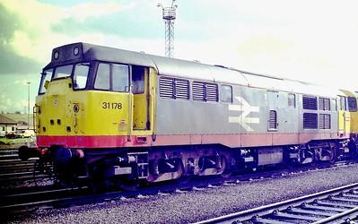 31178-toton-3-3-1991
