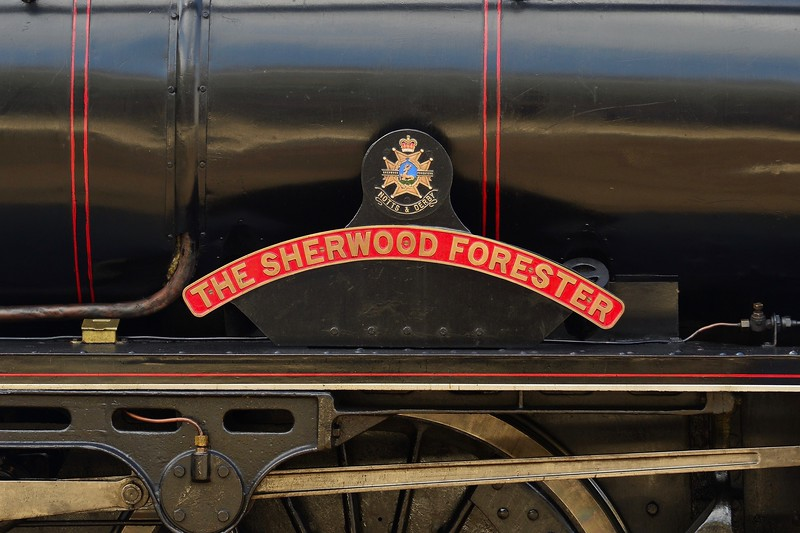 THE SHERWOOD FORESTER""