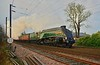 Steam At Morpeth