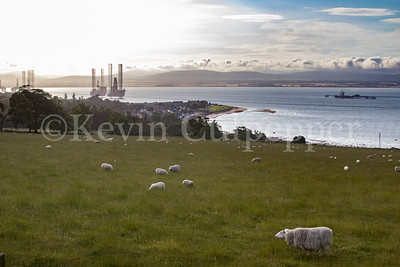 Overlooking Cromarty Firth