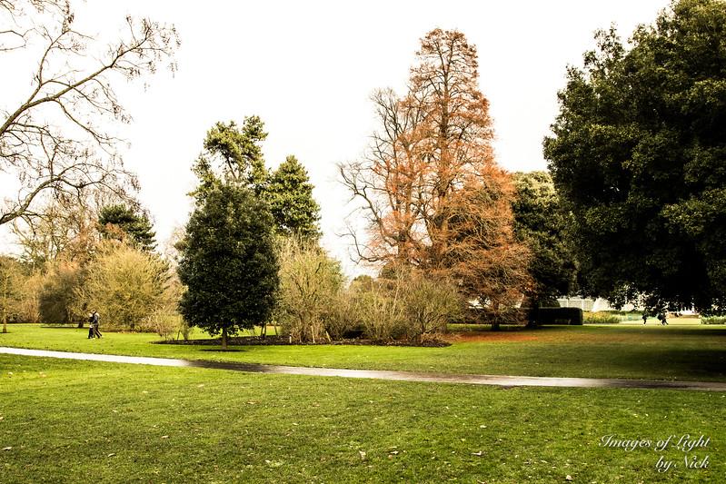 Kew Dec  2017-34
