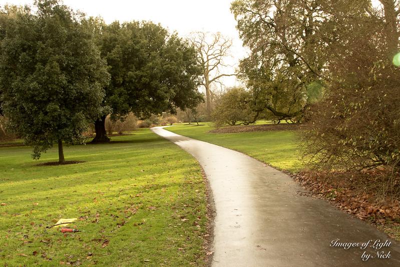 Kew Dec  2017-32