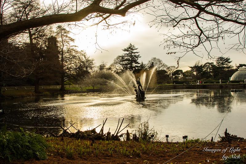 Kew Dec  2017-12