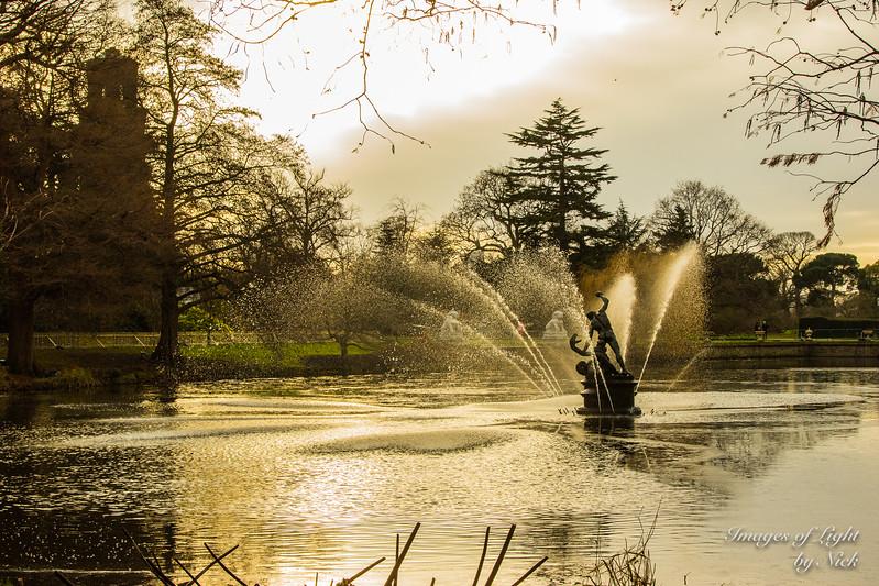 Kew Dec  2017-13