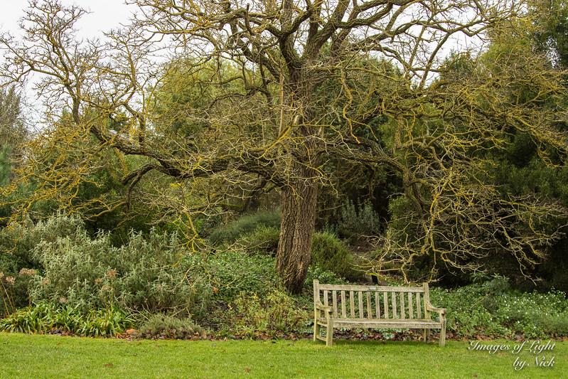 Kew Dec  2017-46