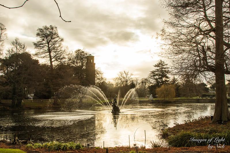 Kew Dec  2017-11