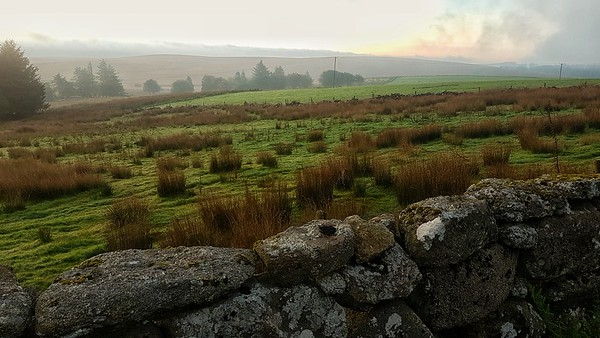 Dawn, Dartmoor