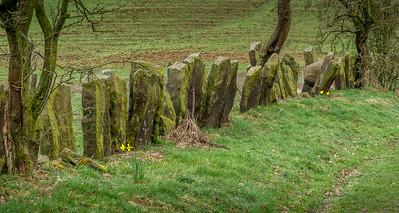 Unique stone wall.