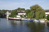 River Thames view from Maidenhead Bridge