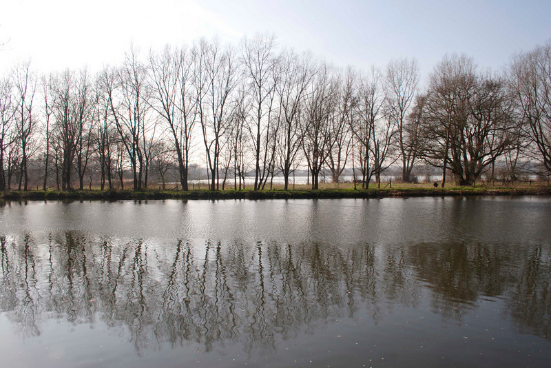 River Thames near Sonning Berkshire