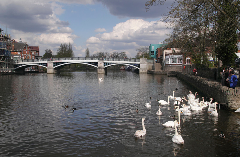 Bridge between Eton and Windsor April 2012