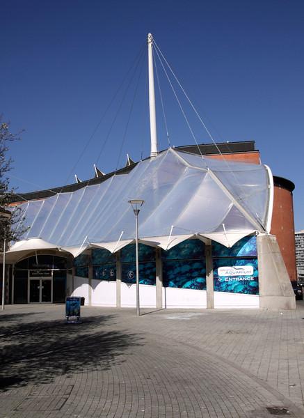 Blue Reef Aquarium Bristol