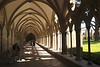 Cloisters in Salisbury Cathedral Wiltshire England