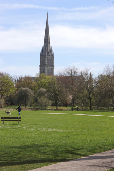 Queen Elizabeth Gardens and Spire of Salisbury Cathedral Wiltshire England