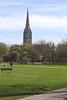Queen Elizabeth Gardens and Spire of Salisbury Cathedral Wiltshire England
