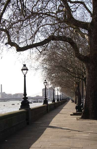 Tree lined path at Chelsea Embankment London