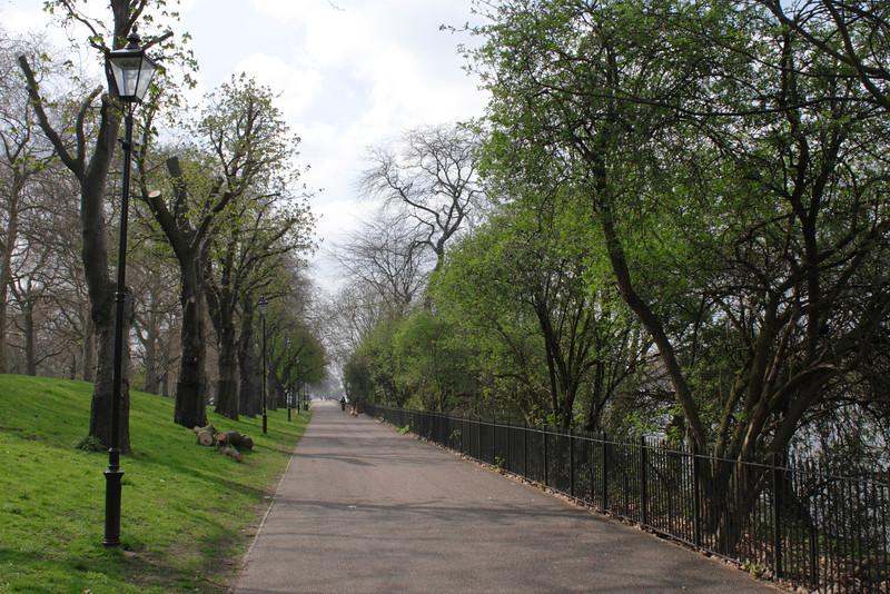 Tree lined path Battersea Park London