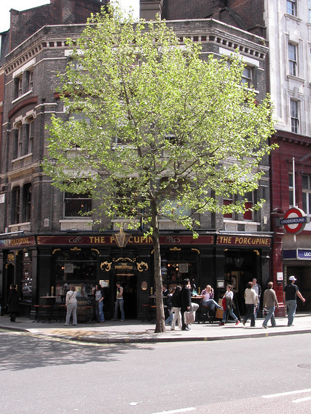 The Porcupine traditional English Pub Charing Cross Road London